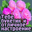 https://dp.mycdn.me/getImage?photoId=833976360616&type=4